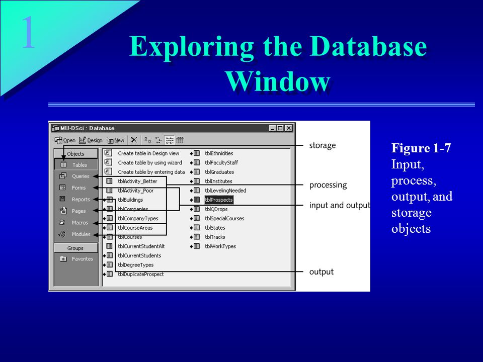 1 Exploring the Database Window Figure 1-7 Input, process, output, and storage objects