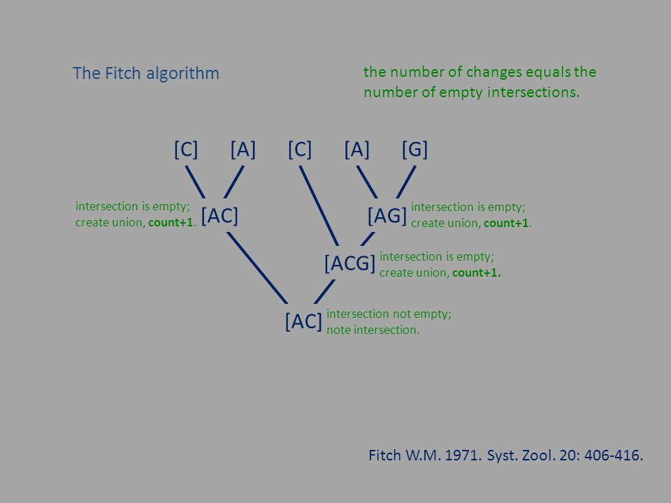 Counting evolutionary changes the parsimony method requires an