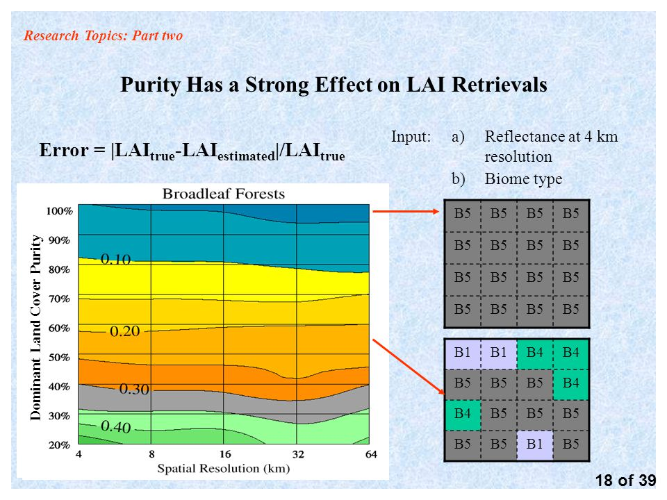 Research Topics: Part two Purity Has a Strong Effect on LAI Retrievals Error = |LAI true -LAI estimated |/LAI true 18 of 39 B1 B4 B5 B4 B5 B1B5 Dominant Land Cover Purity a)Reflectance at 4 km resolution b)Biome type Input: