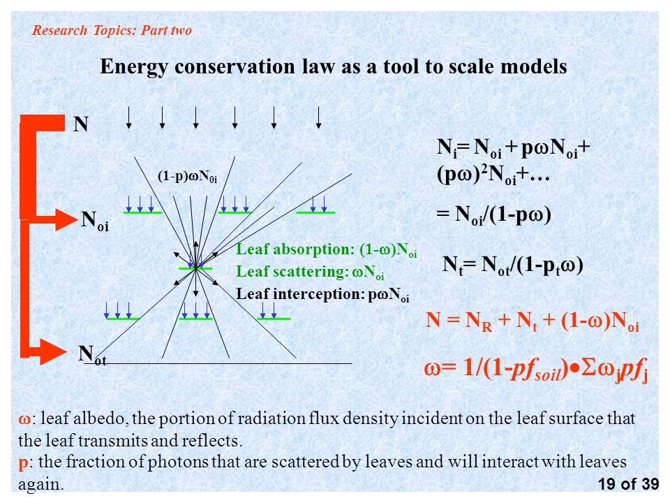 Research Topics: Part two Energy conservation law as a tool to scale models 19 of 39 Leaf absorption: (1-  )N oi Leaf scattering:  N oi Leaf interception: p  N oi N oi N ot (1-p)  N 0i N i = N oi + p  N oi + (p  ) 2 N oi +… = N oi /(1-p  ) N t = N ot /(1-p t  )  = 1/(1-pf soil )  j pf j N N = N R + N t + (1-  )N oi  : leaf albedo, the portion of radiation flux density incident on the leaf surface that the leaf transmits and reflects.