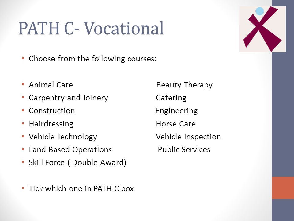 PATH C- Vocational Choose from the following courses: Animal Care Beauty Therapy Carpentry and Joinery Catering Construction Engineering Hairdressing Horse Care Vehicle Technology Vehicle Inspection Land Based Operations Public Services Skill Force ( Double Award) Tick which one in PATH C box