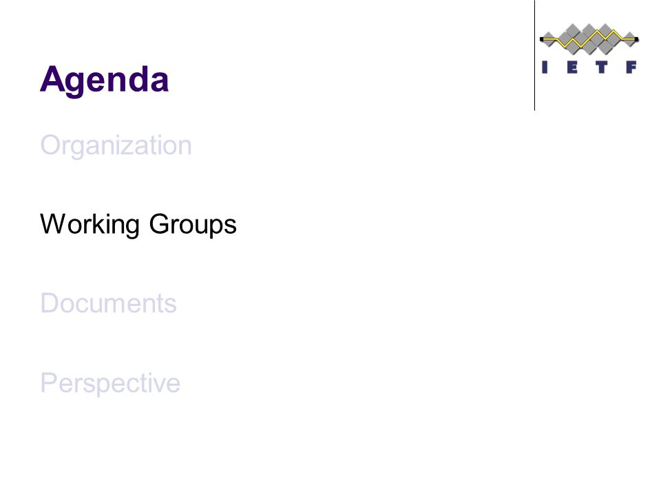 Agenda Organization Working Groups Documents Perspective