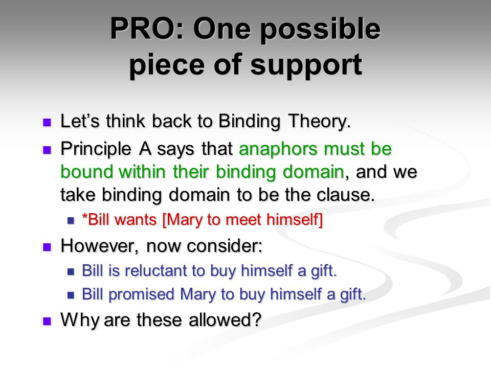 PRO: One possible piece of support Let's think back to Binding Theory.