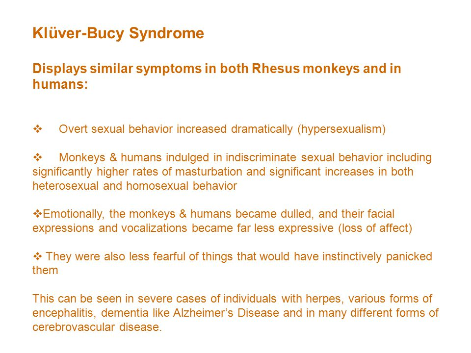 Klüver-Bucy Syndrome Displays similar symptoms in both Rhesus monkeys and in humans:  Overt sexual behavior increased dramatically (hypersexualism)  Monkeys & humans indulged in indiscriminate sexual behavior including significantly higher rates of masturbation and significant increases in both heterosexual and homosexual behavior  Emotionally, the monkeys & humans became dulled, and their facial expressions and vocalizations became far less expressive (loss of affect)  They were also less fearful of things that would have instinctively panicked them This can be seen in severe cases of individuals with herpes, various forms of encephalitis, dementia like Alzheimer's Disease and in many different forms of cerebrovascular disease.