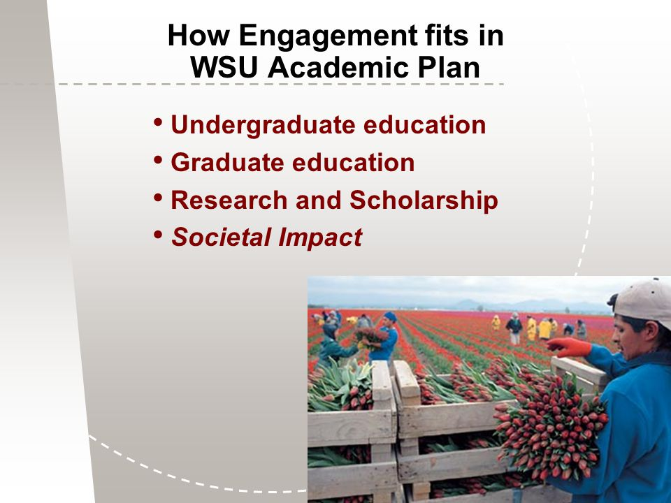 Undergraduate education Graduate education Research and Scholarship Societal Impact How Engagement fits in WSU Academic Plan