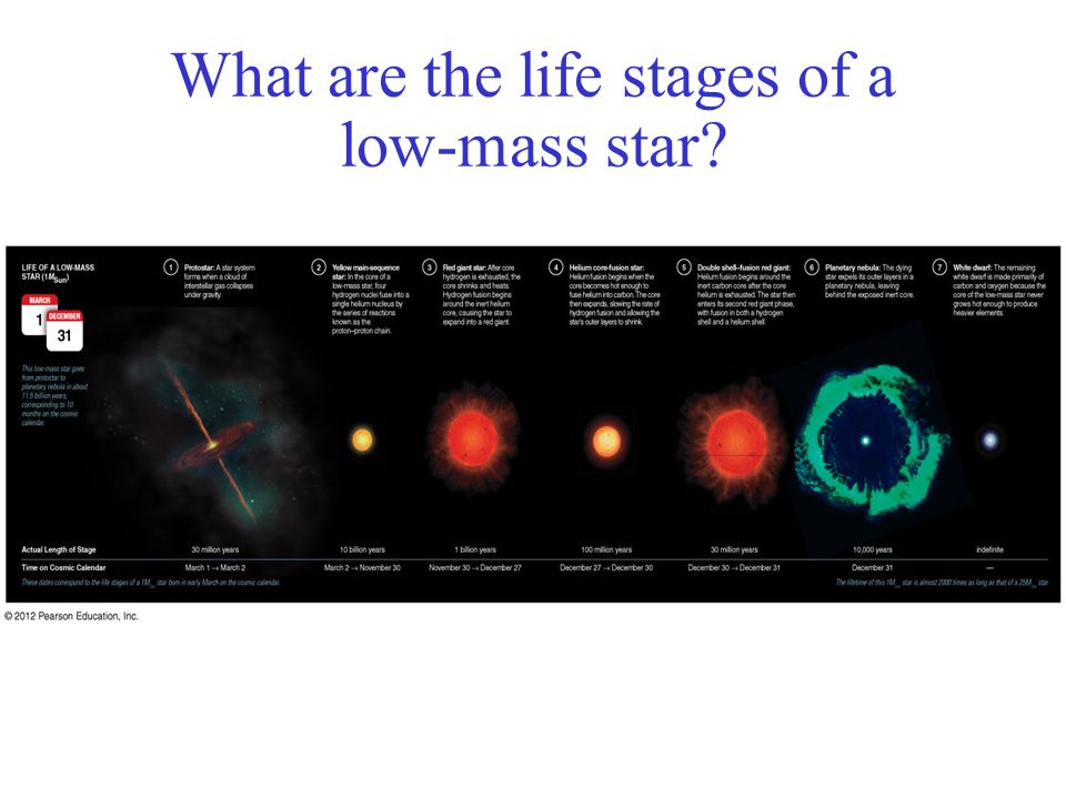 life as a low mass star what are the life stages of a low the life of a high-mass main-sequence star low mass star lifecycle youtube