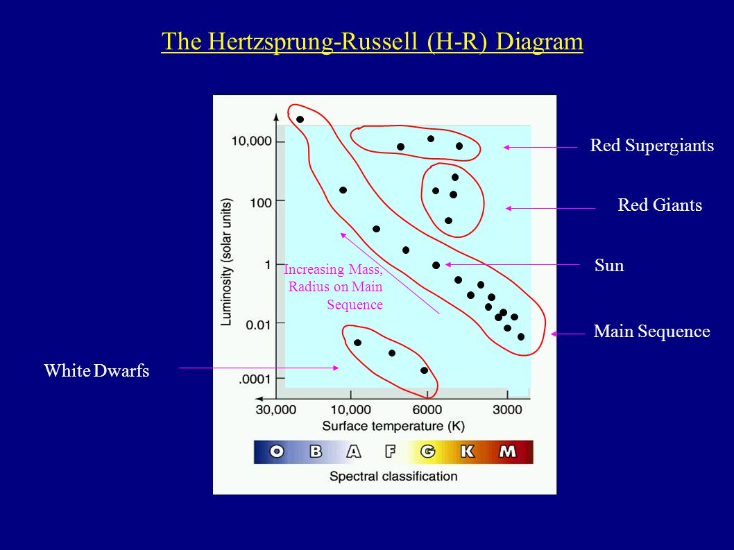 1 main sequence white dwarfs red giants red supergiants increasing mass,  radius on main sequence the hertzsprung-russell (h-r) diagram sun