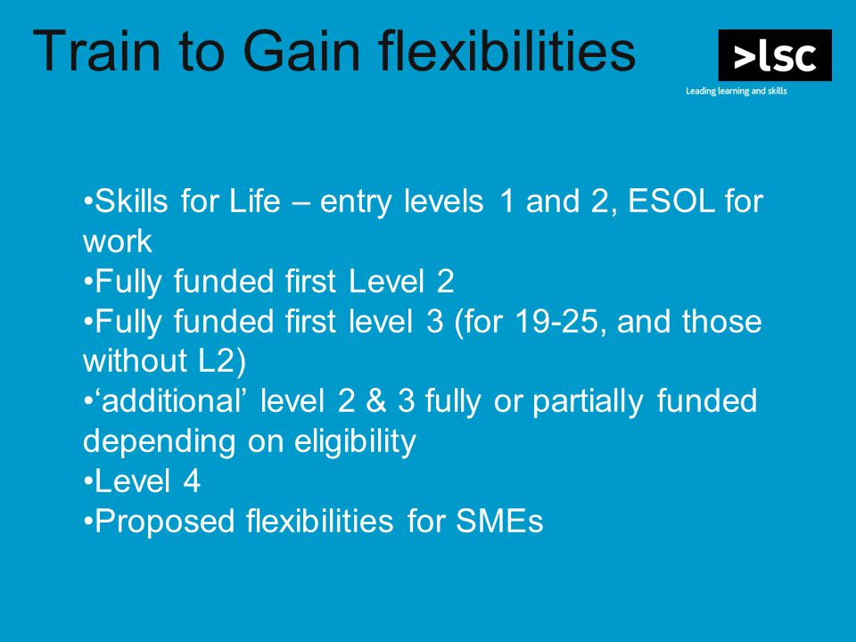 Train to Gain flexibilities Skills for Life – entry levels 1 and 2, ESOL for work Fully funded first Level 2 Fully funded first level 3 (for 19-25, and those without L2) 'additional' level 2 & 3 fully or partially funded depending on eligibility Level 4 Proposed flexibilities for SMEs