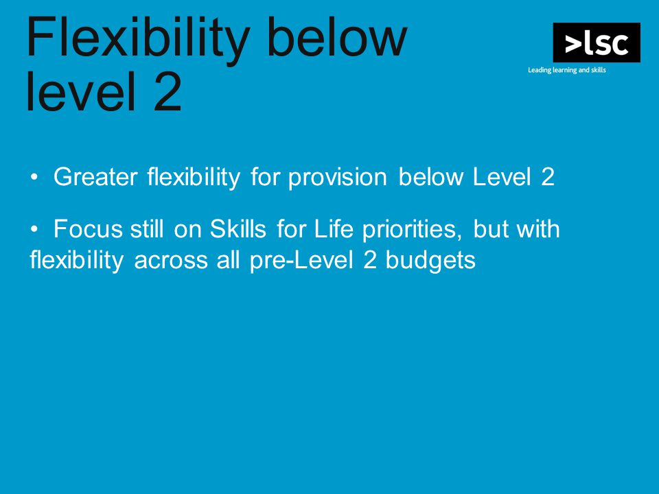 Flexibility below level 2 Greater flexibility for provision below Level 2 Focus still on Skills for Life priorities, but with flexibility across all pre-Level 2 budgets