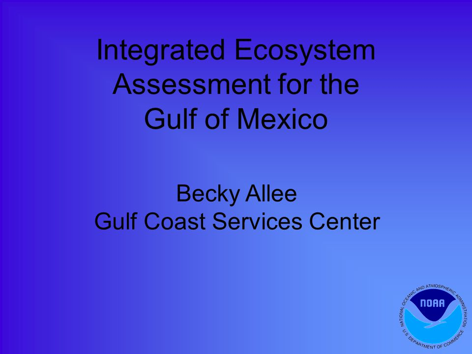 Integrated Ecosystem Assessment for the Gulf of Mexico Becky Allee Gulf Coast Services Center