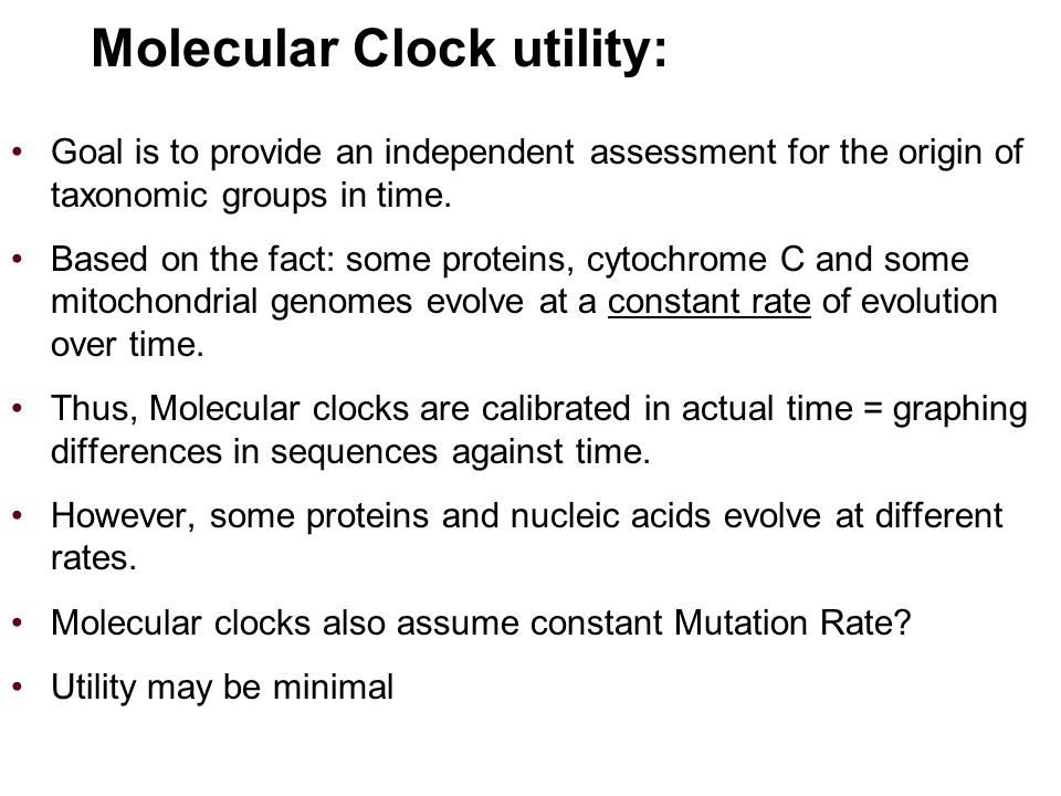 Molecular Clock utility: Goal is to provide an independent assessment for the origin of taxonomic groups in time.