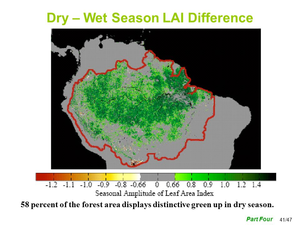 41/47 Dry – Wet Season LAI Difference Part Four 58 percent of the forest area displays distinctive green up in dry season.