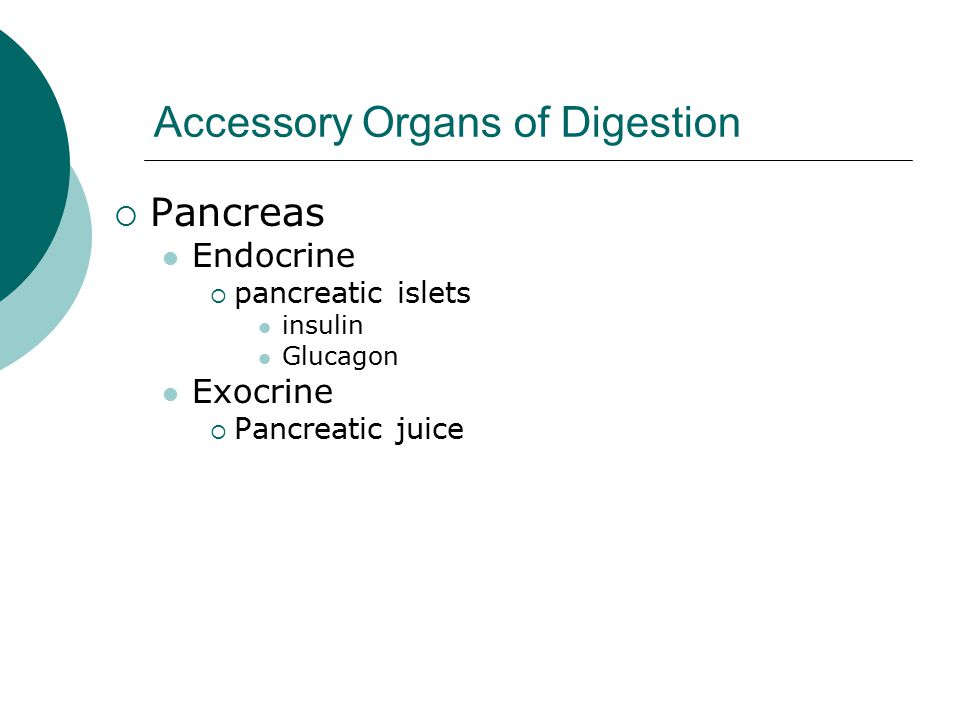 Accessory Organs of Digestion  Pancreas Endocrine  pancreatic islets insulin Glucagon Exocrine  Pancreatic juice