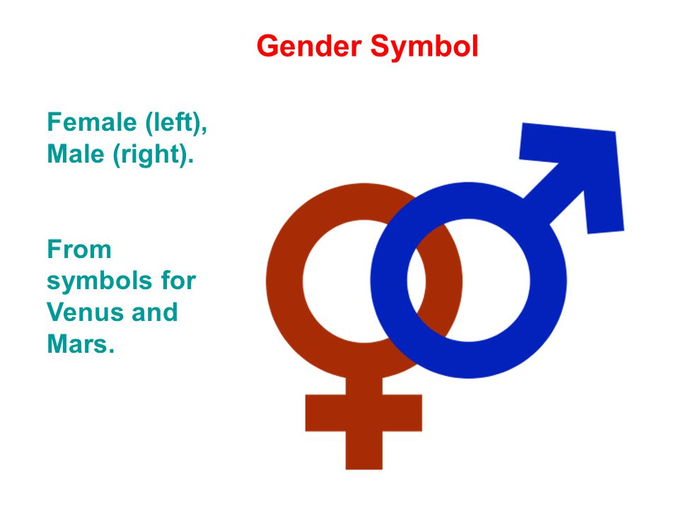 Gender Symbol Female Left Male Right From Symbols For Venus