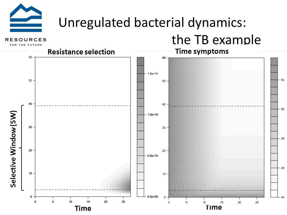 Unregulated bacterial dynamics: the TB example Selective Window (SW) Time Time symptoms Time Resistance selection