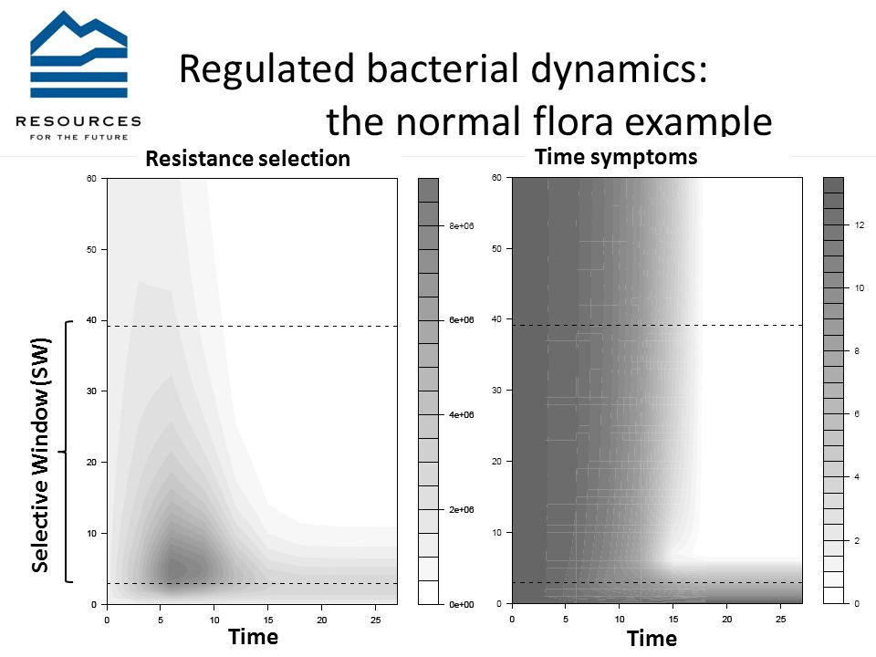 Regulated bacterial dynamics: the normal flora example Selective Window (SW) Time Time symptoms Time Resistance selection