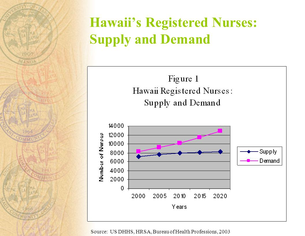 Hawaii's Registered Nurses: Supply and Demand Source: US DHHS, HRSA, Bureau of Health Professions, 2003