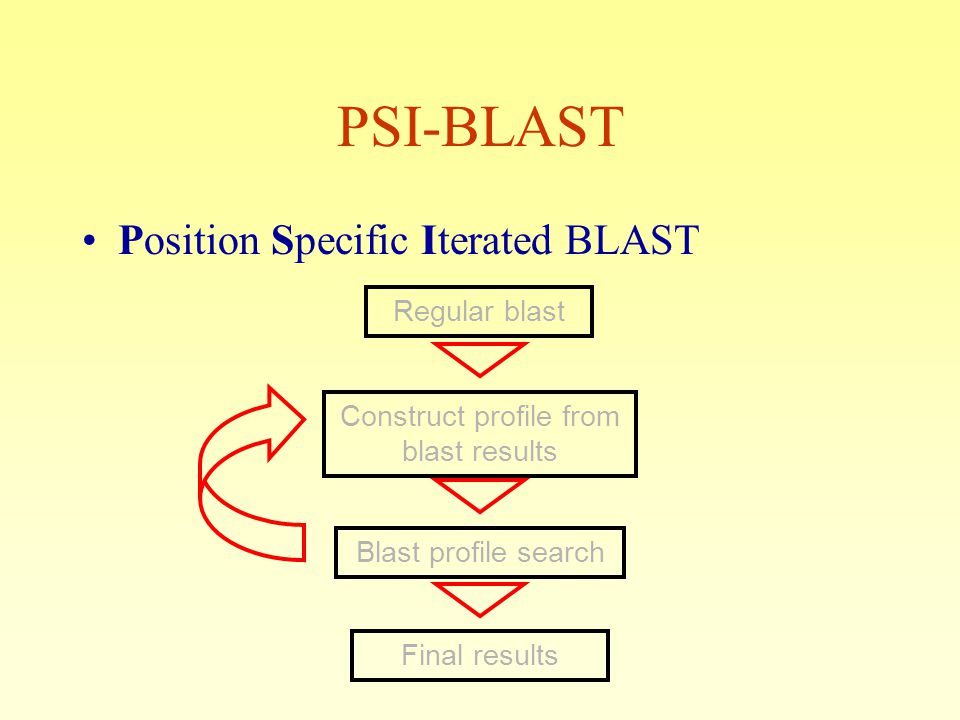 Position Specific Iterated BLAST Regular blast Construct profile from blast results Blast profile search Final results