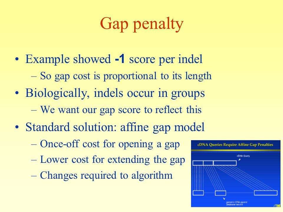 Gap penalty Example showed -1 score per indel –So gap cost is proportional to its length Biologically, indels occur in groups –We want our gap score to reflect this Standard solution: affine gap model –Once-off cost for opening a gap –Lower cost for extending the gap –Changes required to algorithm