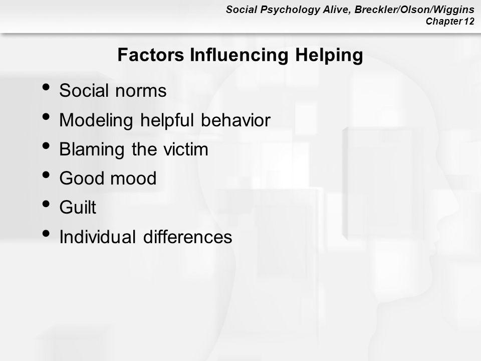 Social Psychology Alive, Breckler/Olson/Wiggins Chapter 12