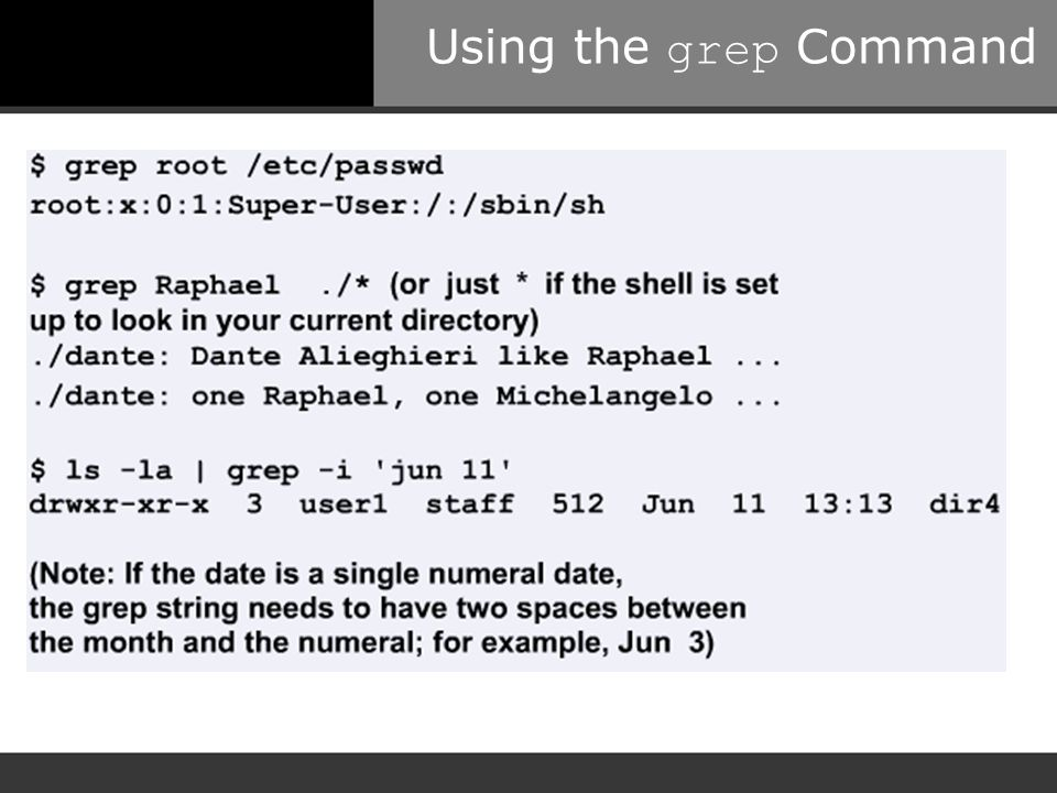 Using the grep Command