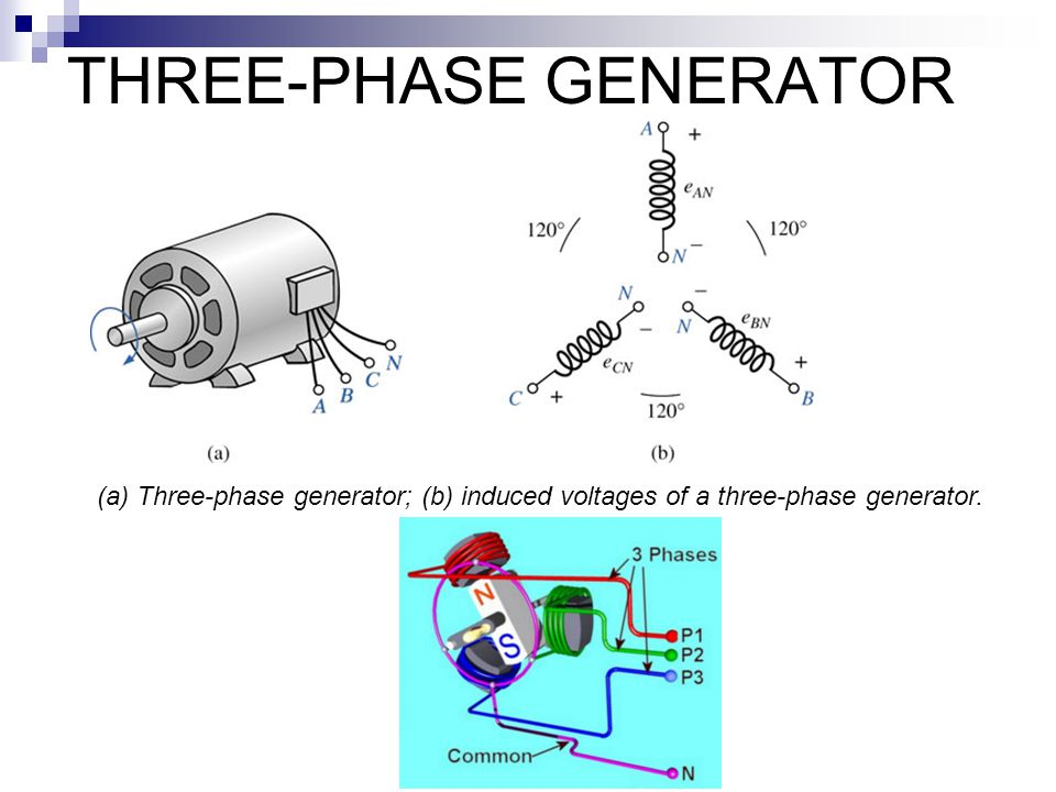 3 Phase Ac Generator Diagram Explore Wiring Diagram On The Net