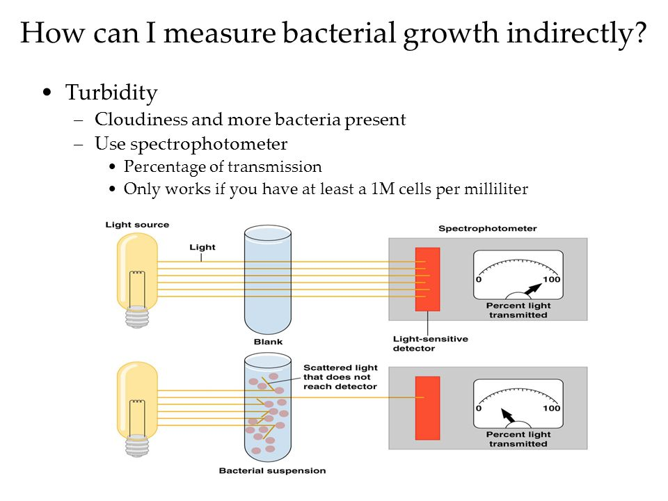 How can I measure bacterial growth indirectly.