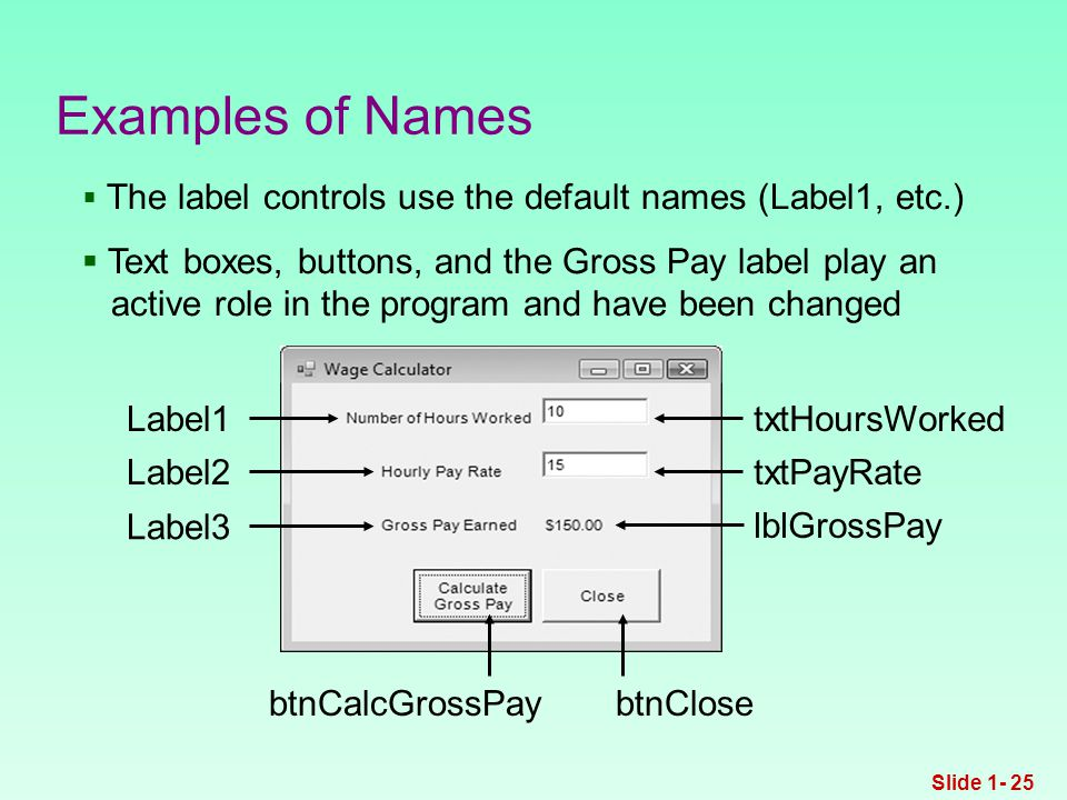 Examples of Names btnCalcGrossPaybtnClose txtHoursWorked txtPayRate lblGrossPay Label1 Label2 Label3  The label controls use the default names (Label1, etc.)  Text boxes, buttons, and the Gross Pay label play an active role in the program and have been changed Slide 1- 25