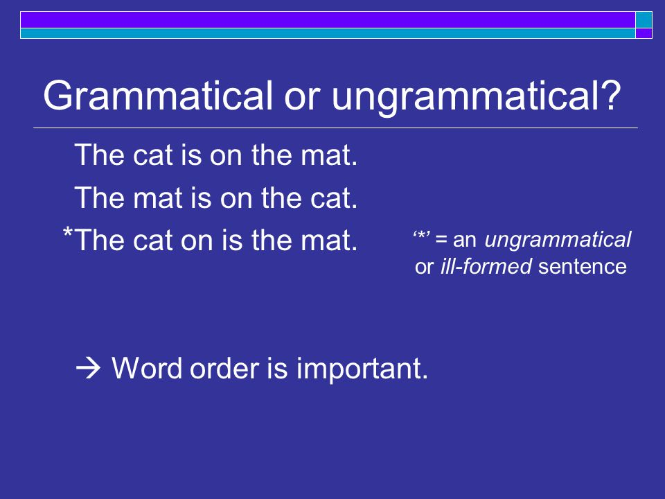 Grammatical or ungrammatical. The cat is on the mat.