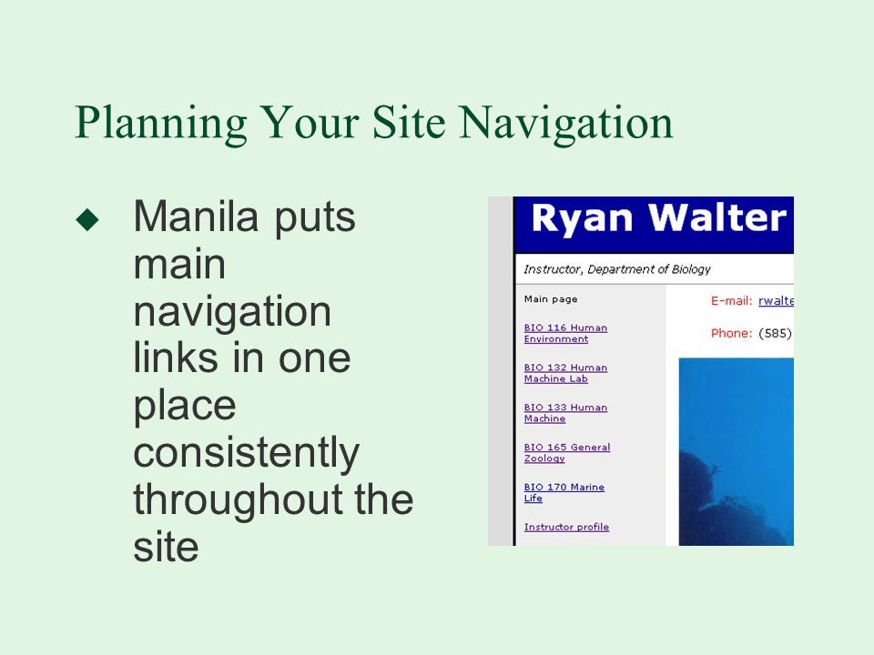 Planning Your Site Navigation u Manila puts main navigation links in one place consistently throughout the site