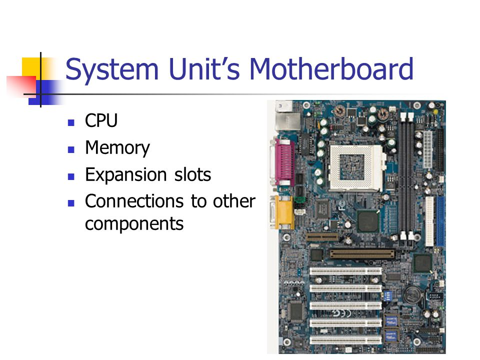 System Unit's Motherboard CPU Memory Expansion slots Connections to other components