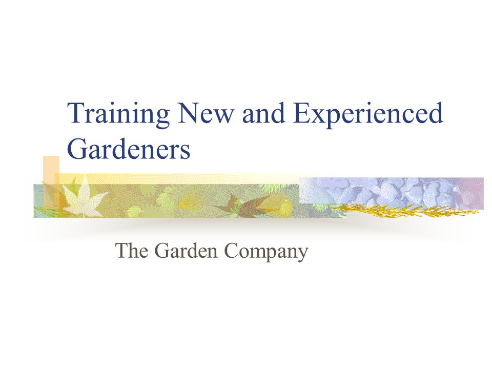 1 Training New And Experienced Gardeners The Garden Company