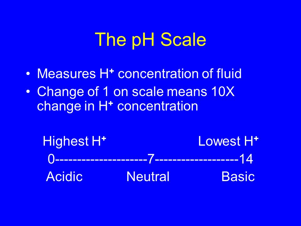 The pH Scale Measures H + concentration of fluid Change of 1 on scale means 10X change in H + concentration Highest H + Lowest H Acidic Neutral Basic