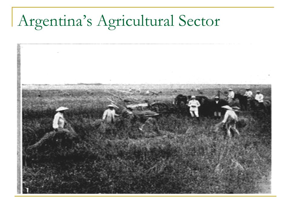 Argentina's Agricultural Sector