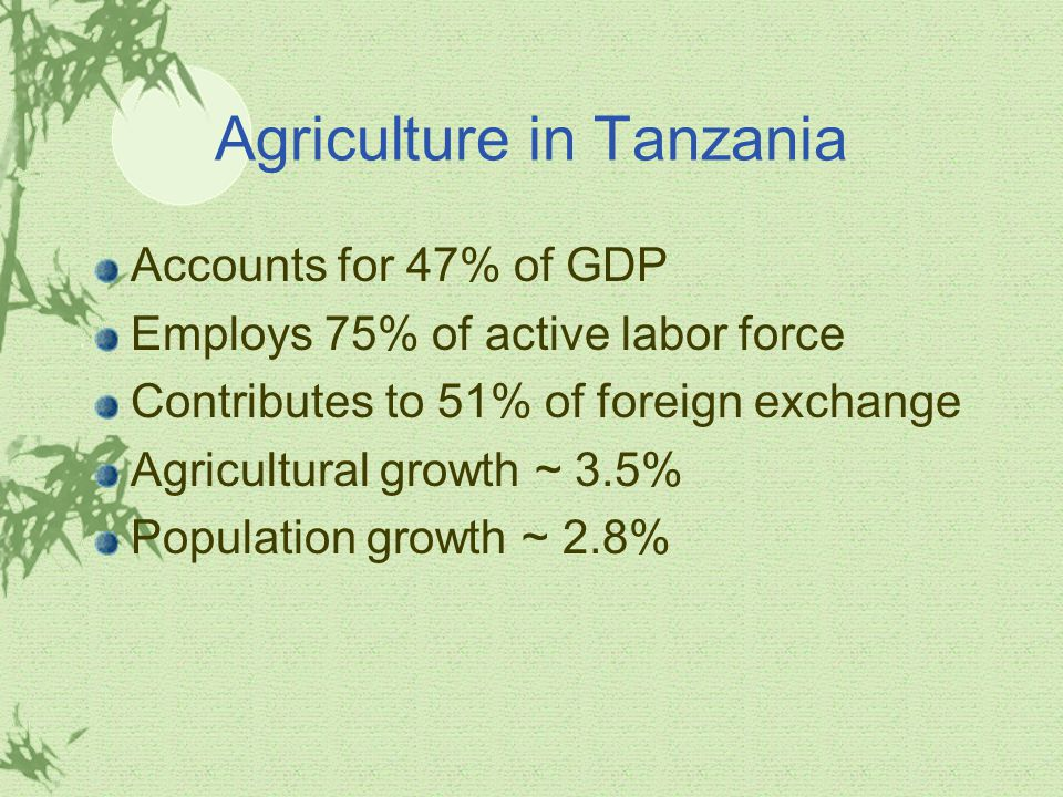 Agriculture in Tanzania Accounts for 47% of GDP Employs 75% of active labor force Contributes to 51% of foreign exchange Agricultural growth ~ 3.5% Population growth ~ 2.8%