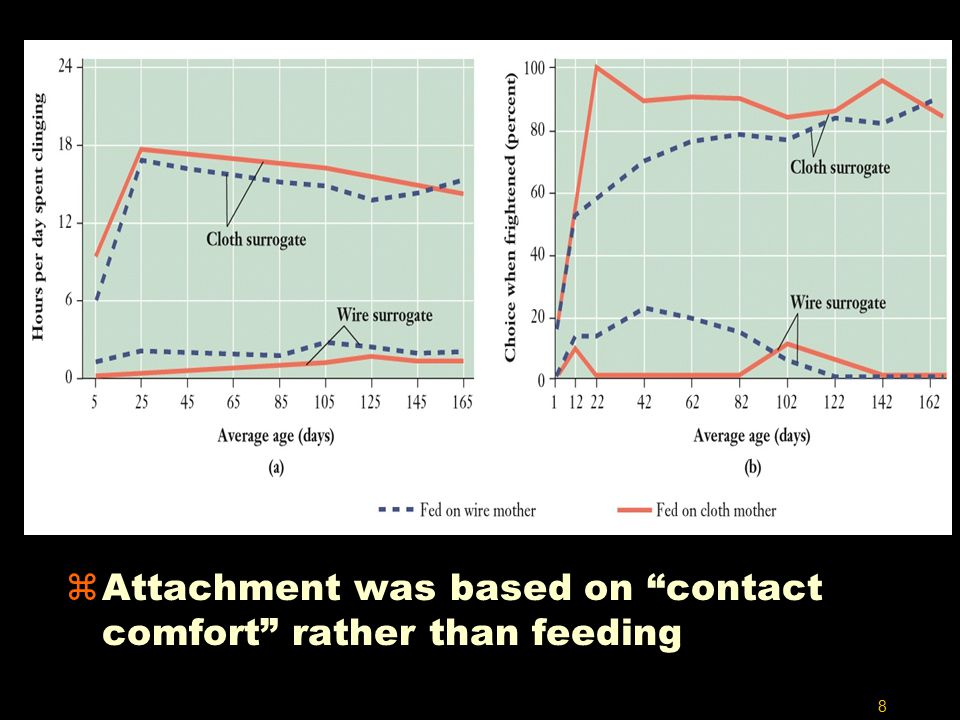 8 zAttachment was based on contact comfort rather than feeding
