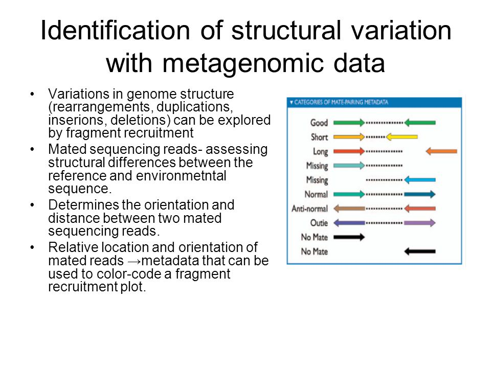 Identification of structural variation with metagenomic data Variations in genome structure (rearrangements, duplications, inserions, deletions) can be explored by fragment recruitment Mated sequencing reads- assessing structural differences between the reference and environmetntal sequence.
