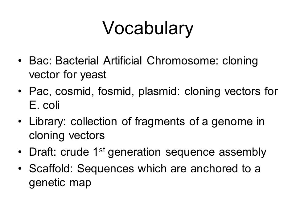 Vocabulary Bac: Bacterial Artificial Chromosome: cloning vector for yeast Pac, cosmid, fosmid, plasmid: cloning vectors for E.