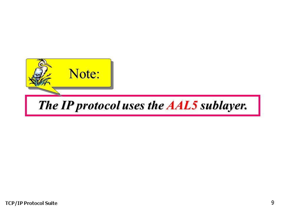 TCP/IP Protocol Suite 9 The IP protocol uses the AAL5 sublayer. Note: