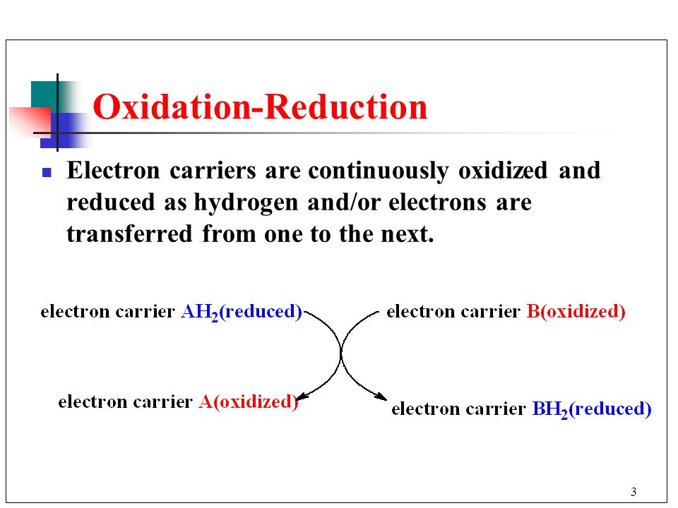3 Oxidation-Reduction Electron carriers are continuously oxidized and reduced as hydrogen and/or electrons are transferred from one to the next.