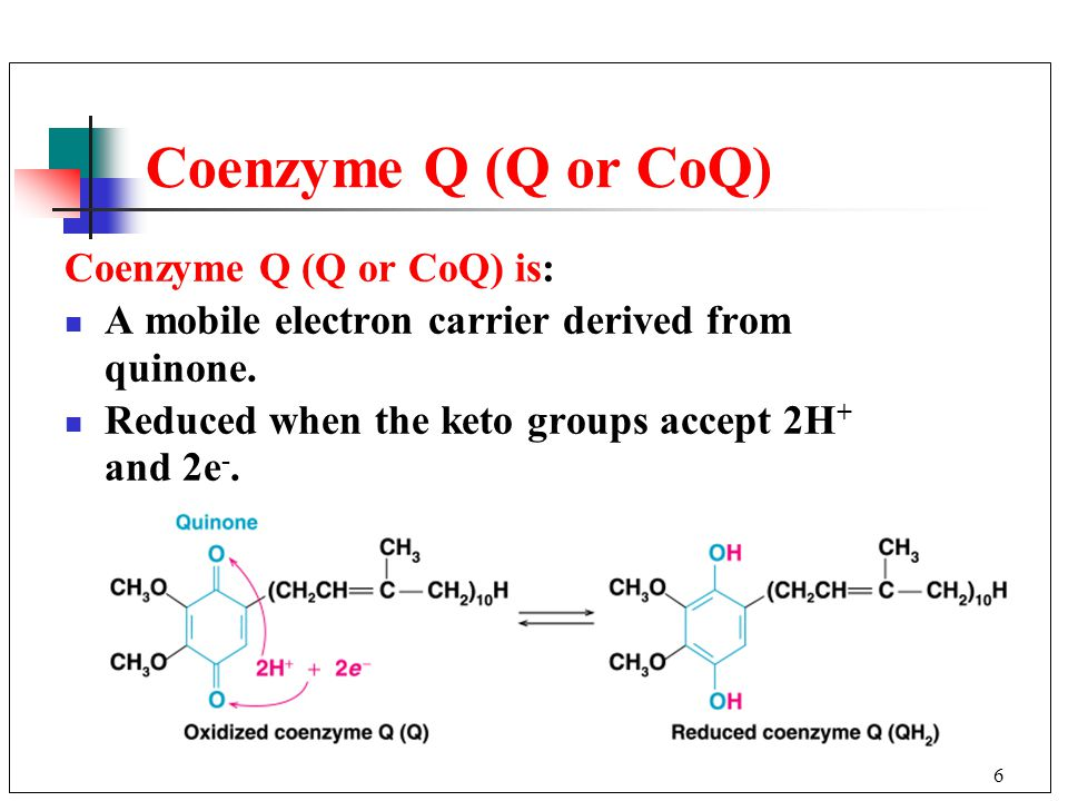 6 Coenzyme Q (Q or CoQ) Coenzyme Q (Q or CoQ) is: A mobile electron carrier derived from quinone.
