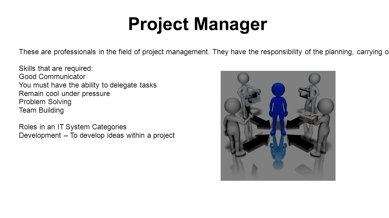 Project Manager These are professionals in the field of project management.