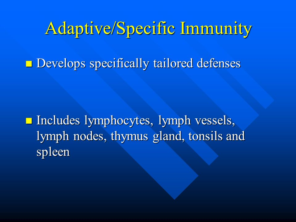 Adaptive/Specific Immunity Develops specifically tailored defenses Develops specifically tailored defenses Includes lymphocytes, lymph vessels, lymph nodes, thymus gland, tonsils and spleen Includes lymphocytes, lymph vessels, lymph nodes, thymus gland, tonsils and spleen