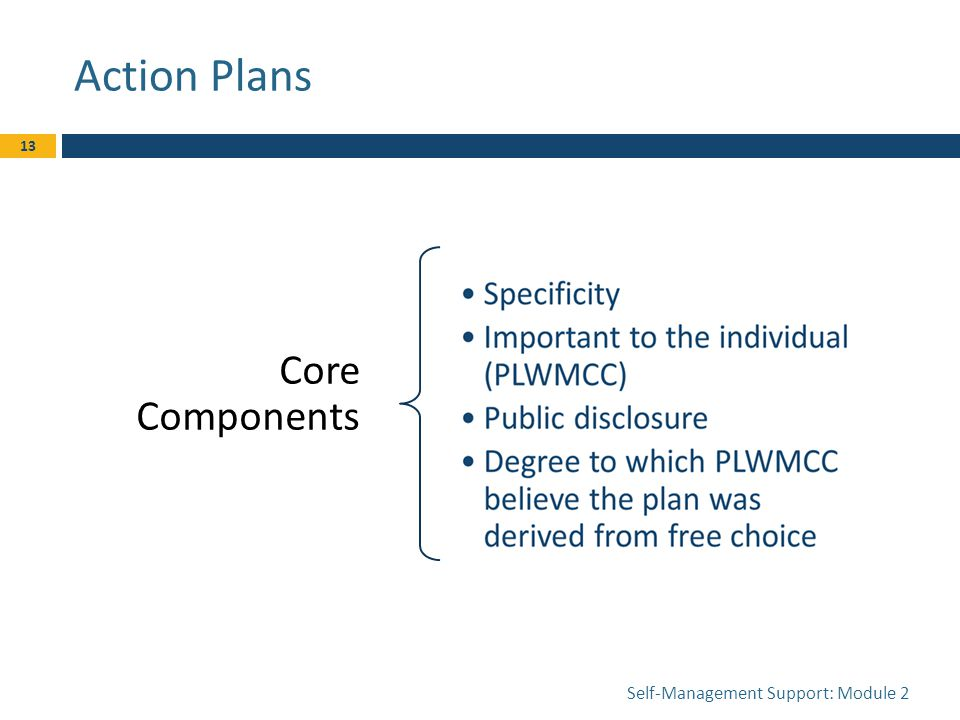 Action Plans Core Components Self-Management Support: Module 2 13