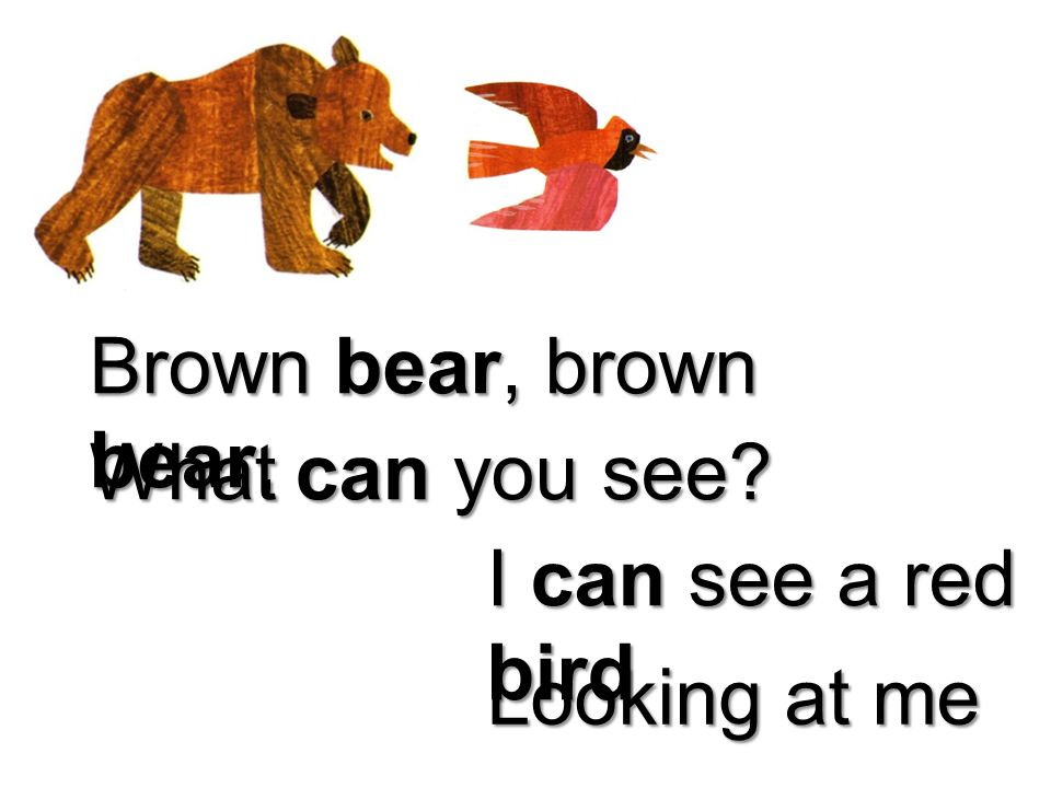 Brown bear, brown bear, What can you see I can see a red bird Looking at me
