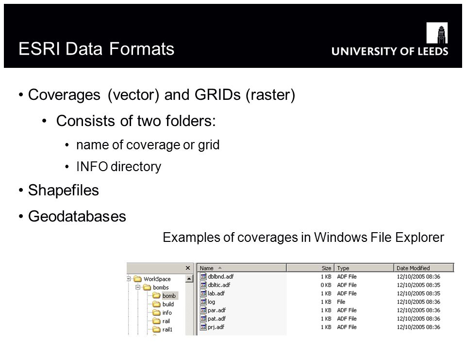 ESRI Data Formats Coverages (vector) and GRIDs (raster) Consists of two folders: name of coverage or grid INFO directory Shapefiles Geodatabases 10 Examples of coverages in Windows File Explorer
