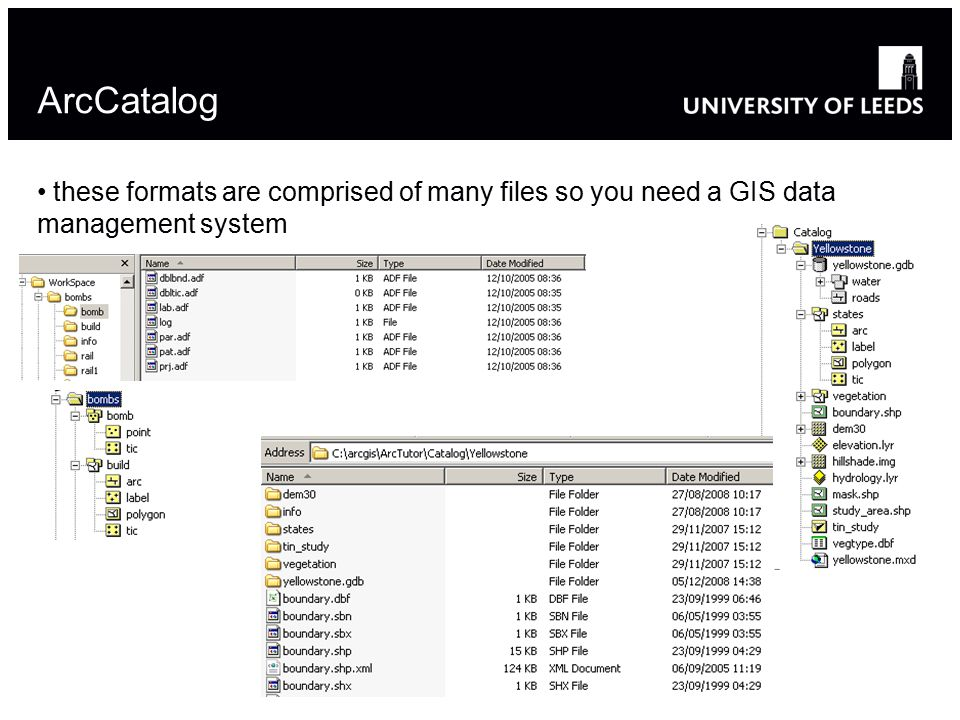 ArcCatalog these formats are comprised of many files so you need a GIS data management system