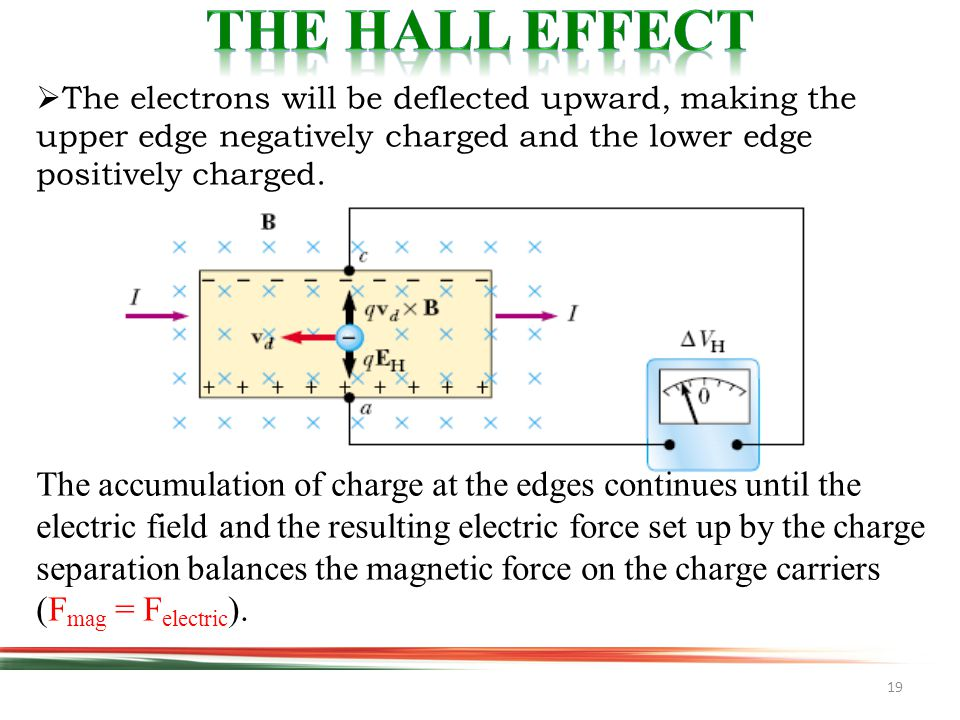 19  The electrons will be deflected upward, making the upper edge negatively charged and the lower edge positively charged.
