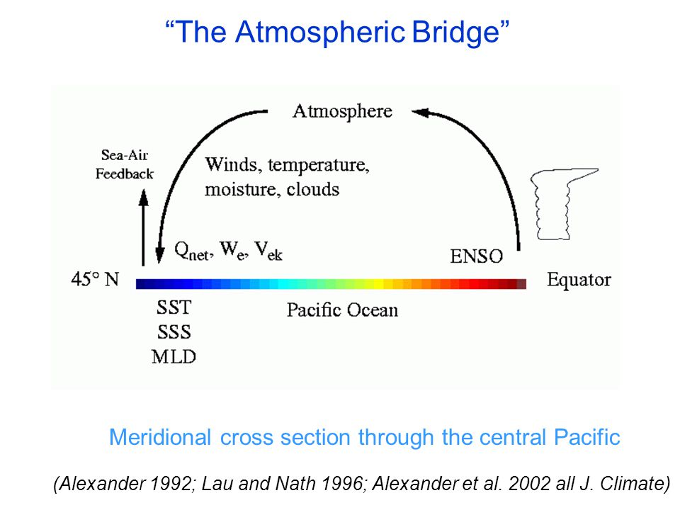 The Atmospheric Bridge Meridional cross section through the central Pacific (Alexander 1992; Lau and Nath 1996; Alexander et al.