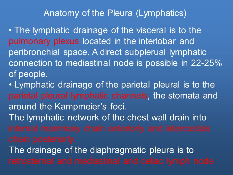 The lymphatic drainage of the visceral is to the pulmonary plexus located in the interlobar and peribronchial space.